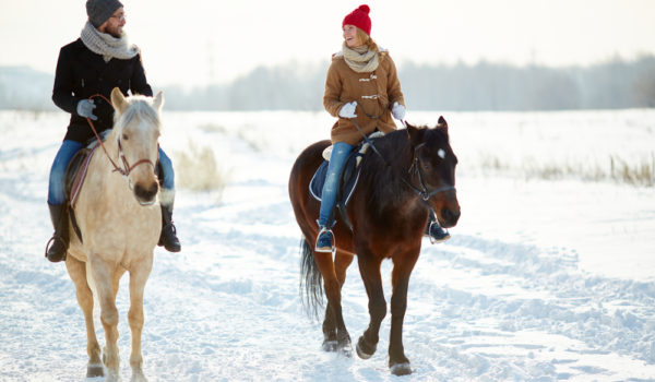 Где можно отдохнуть, покататься верхом на конях,попарится в баньке, и многое другое в Томске